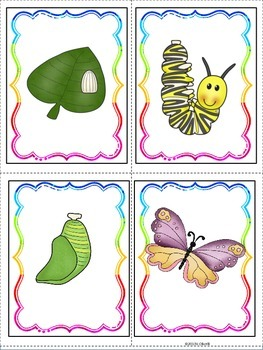 ESL Insects, Bugs and Garden Friends Vocabulary/Conversation Building Cards