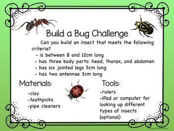 Insects - Build a Bug STEM / STEAM Challenge and Informational Posters