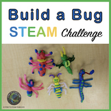 Insects - Build a Bug STEM / STEAM Challenge and Informati