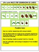 Insects- Butterfly Life Cycle Sequencing Cards and Visuals- Sequencing Center