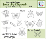 Insects Clipart - Realistic and Detailed Line Drawings