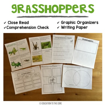 Insects Unit with Close Reads, Insects and Bugs Life Cycle