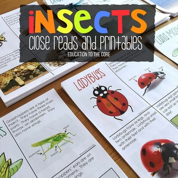 Insects Unit with Close Reads | Bugs and Insects Activities | Insect Life Cycle