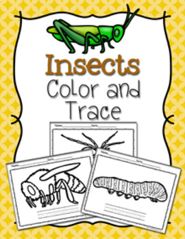 Insects Color and Trace