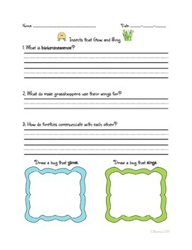 Insects Unit - Common Core NYS Domain 8
