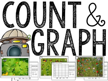 Insects: Counting & Graphing