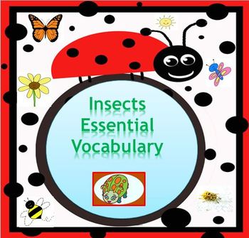 Insects Essential Vocabulary Through Fun Activities