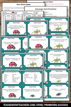 Insect Activities, Insect Games for Kids using Insect Facts Task Cards