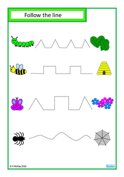 Insects Fine Motor Skills, Matching, Write & Wipe, Autism Special Education