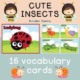 Insects Flash Cards; Kindergarten; Preschool; Homeschool;