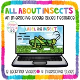 Insects Google Slides Google Classroom Resource