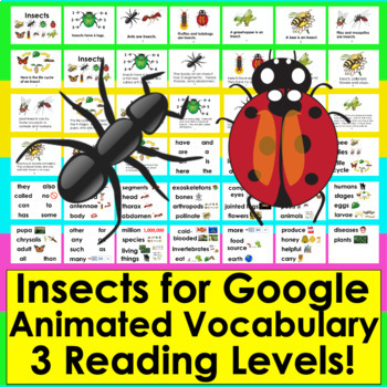 Insects Google Slides Presentation 3 Levels +Illustrated Vocab Distance Learning