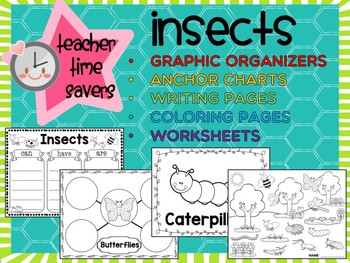 Insects: Graphic Organizers, Anchor Charts, Worksheets, Coloring, Posters SET 1