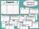 Insects: Graphic Organizers, Anchor Charts, Worksheets, Coloring, Posters SET 2