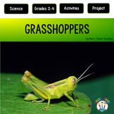 Grasshoppers - A Non-Fiction and Literacy Unit