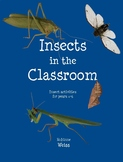 Insects In the Classroom