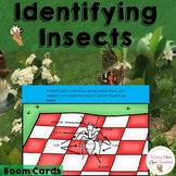 Insects Interactive Digital Lesson