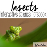 Insects Interactive Notebook