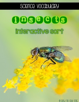 Insects {Interactive Vocabulary Sort}