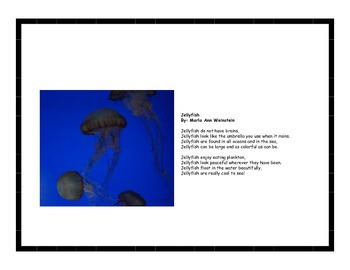 Insects & Invertebrates Poetry Pack