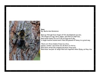 Insects & Invertebrates Poetry Pack #2