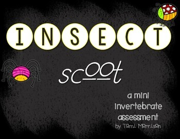 Insects & Invertebrates {Scoot} Assessment