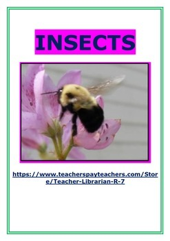 Insects: Investigation and Animal Study
