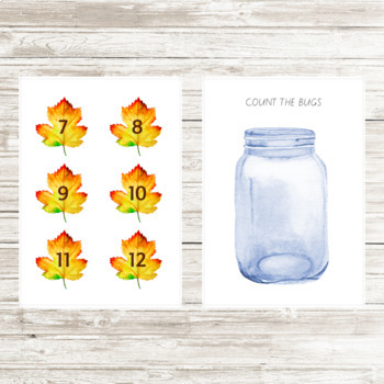 Insects Jar Counting Activity
