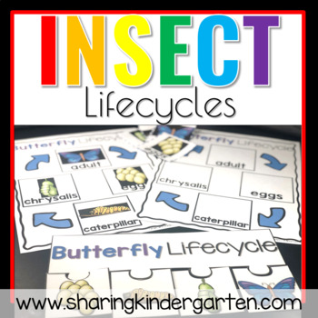 Insect Lifecycles