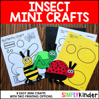 Insects Mini Crafts