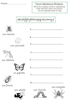 Insects / Minibeasts handwritting French