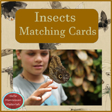 Insects - Montessori Matching Cards