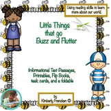 Insects: Nonfiction Passages with variety of reading review activities
