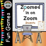 Insects Online Game - Zoomed in on Zoom