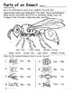 Insects - Parts of an Insect - Reading, Identifying  and C