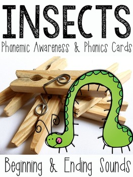 Insects: Phonemic Awareness & Phonics Clip Cards
