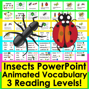 Insects:  PowerPoint With Animations and Vocabulary Slides