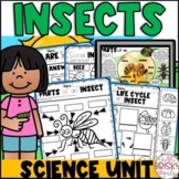 Insects Preschool | Insects and Bugs Preschool | Insects P