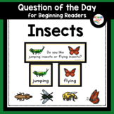 Insects and Bugs Question of the Day for Preschool and Kindergarten