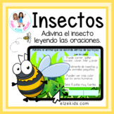 Insects | Reading Comprehension in Spanish | Insectos en e