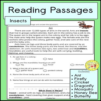 Insects Reading Passages