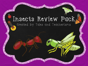 Insects Review Pack