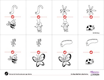 Insects Spanish Lesson Complete Set - Los Insectos