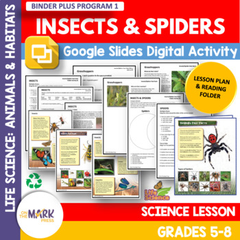 Insects & Spiders Lesson & Reading Folder