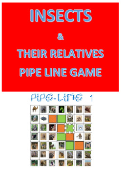 Insects & Their Kin Pipe Line Game