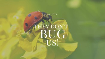 Insects - They don't bug us