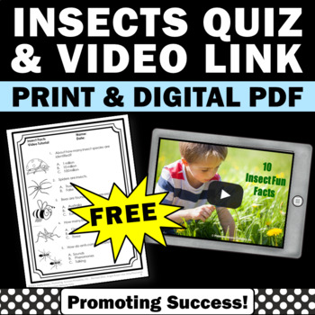 FREE Insects Video for Kids, Insect Worksheet Quiz, Insects Lesson Plan