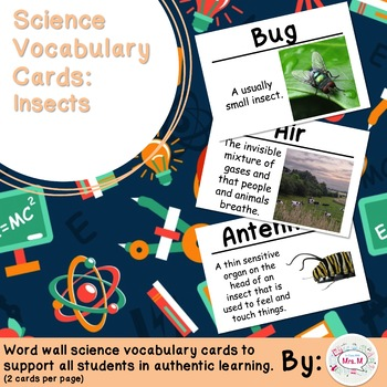 Insects Vocabulary Cards (FOSS Insects Module) Large
