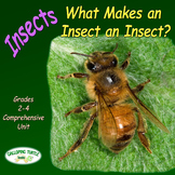 Insects – What Makes an Insect an Insect (Nonfiction Scien