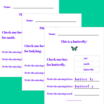 Animal Vocabulary, Printable (Insects)